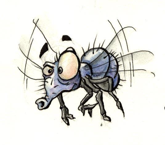 Fini mouches et moustiques
